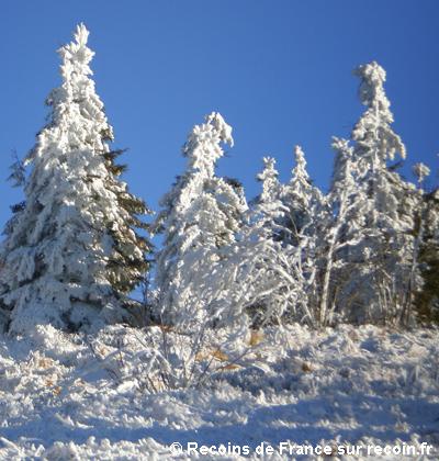 Ski au col de la Schlucht