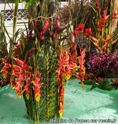 Floralies de Sanary