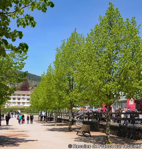 Lac de G�rardmer