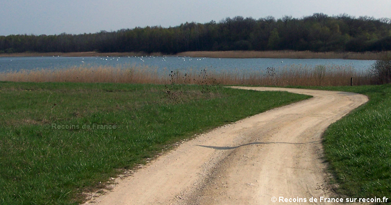 Lac de la Madine
