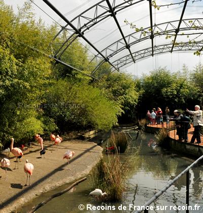 Parc des oiseaux de Villars les Dombes