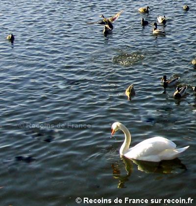 Réservoir de Bouzey