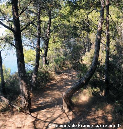 Sentier du littoral Cap Sici�