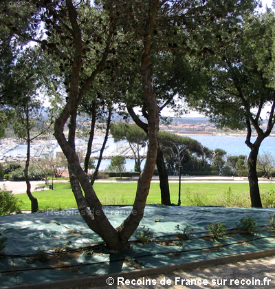 Jardin de la Méditerranée