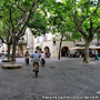 Place aux Herbes d'Uzès
